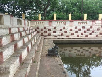 Bull - AntaraGange pond