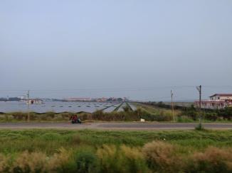 Solar Panels powering Kochi International Airport