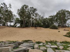 Sand Dunes at Talakadu