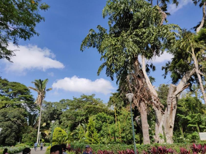 Beautiful Day at Lalbagh