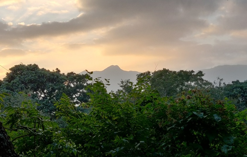 Sunrise - Forest Rest House Attakatty